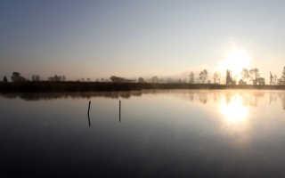 Ловля судака в ноябре: Способы ловли судака в ноябре