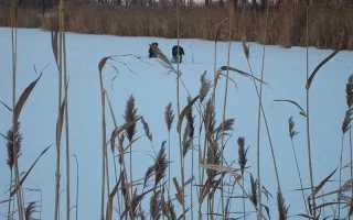 Удобное место ловли в холодное время года