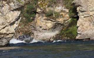 Рыболовный тур на Хам-Сыре и притоках