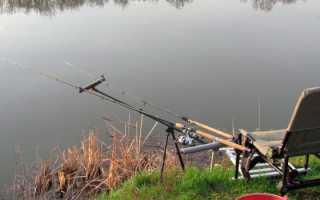 Пикерная снасть на карася: для интересной рыбалки и отличных уловов
