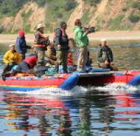 Рыболовное путешествие на Шантарские острова