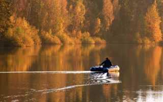 Ловля в ноябре на удочку перед ледоставом: лучшие наживки для осенней рыбалки