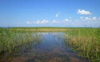 Самро озеро