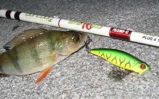 Кастинговый спиннинг — залог богатого улова